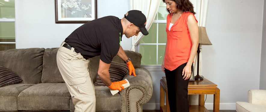 Woodland Hills, CA carpet upholstery cleaning