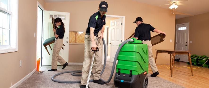 Woodland Hills, CA cleaning services