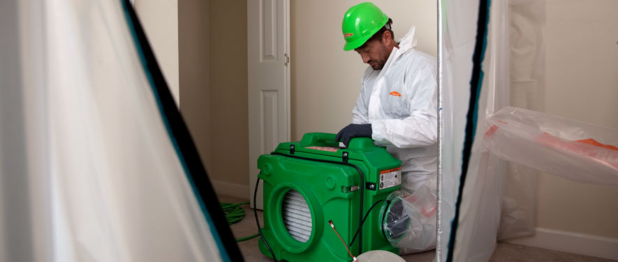 Woodland Hills, CA mold cleanup