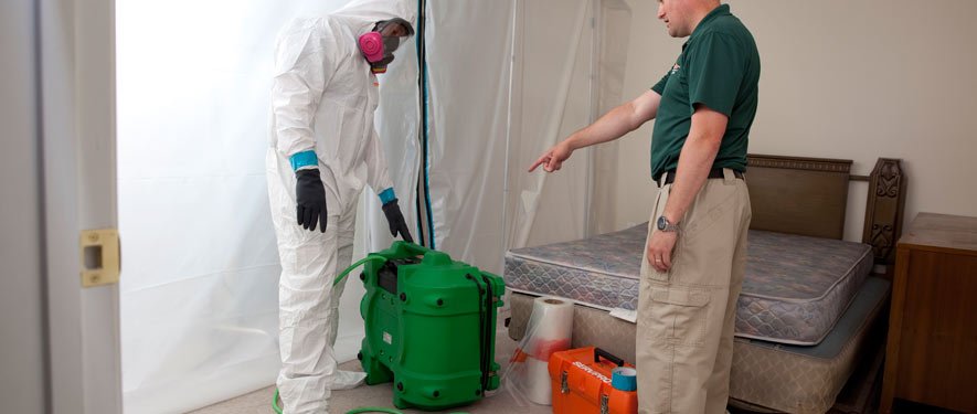 Woodland Hills, CA mold removal process